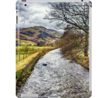 Harmony Flowing iPad Case/Skin