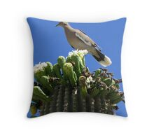 White-winged Dove Throw Pillow