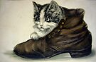 Kitten in Shoe by Susan S. Kline