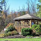 Sunny Gazebo  by Monnie Ryan