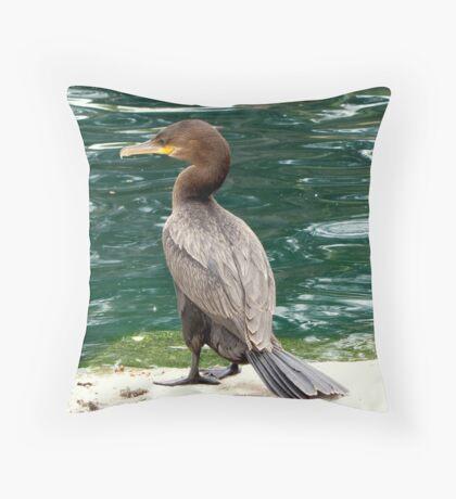 Neotropic Cormorant Throw Pillow