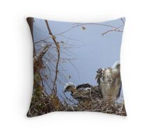 Red-tailed Hawks ~ Babies V Throw Pillow