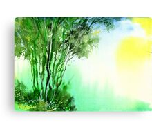 Green 1 Canvas Print