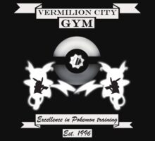 Vermilion city gym by Genus Bombus