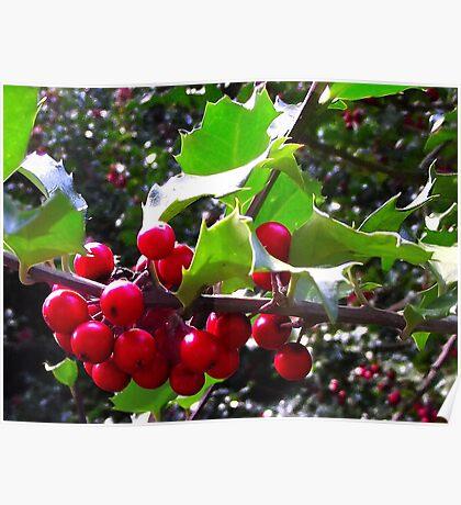 """""""Christmas 2011"""" Poster"""