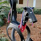 Horsey tire-swing by Scott Mitchell