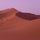 Merzouga Desert (Morocco) by garigots