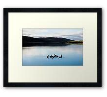 Shetland Isles Framed Print