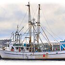The White Fishing Boat by Poete100