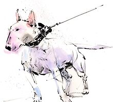 English Bull Terrier by Gary Wing
