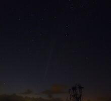 Comet Lovejoy [C/2011 W3 (Lovejoy)] by Odille Esmonde-Morgan