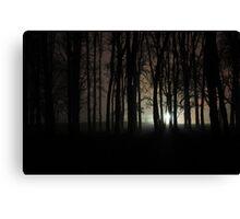 Nacht Bild ( night picture) Canvas Print