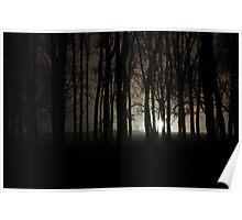 Nacht Bild ( night picture) Poster