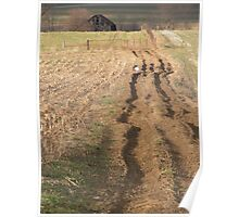The Rutted Road Poster
