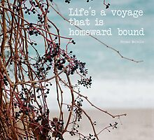 the voyage by Teresa Pople