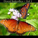 Desert Butterflies ~ Vol 1 by Kimberly Chadwick