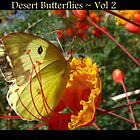 Desert Butterflies ~ Vol 2 by Kimberly Chadwick
