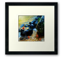 Willow River Falls Framed Print