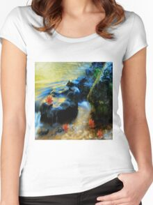 Willow River Falls Women's Fitted Scoop T-Shirt