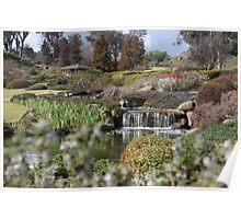 Cowra Japanese garden Poster