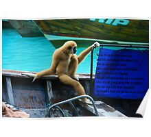 monkey in a boat Poster