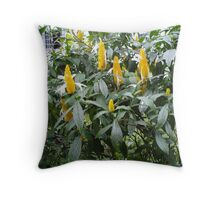 Garden, Sri Lanka Throw Pillow