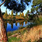 Late autumn by the Derwent River by clickedbynic