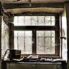 Window by Zora