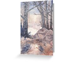 Winter on The Common Greeting Card