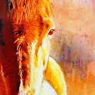 Amber by Jacki  Clark