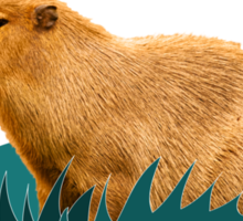 I love capybaras Sticker