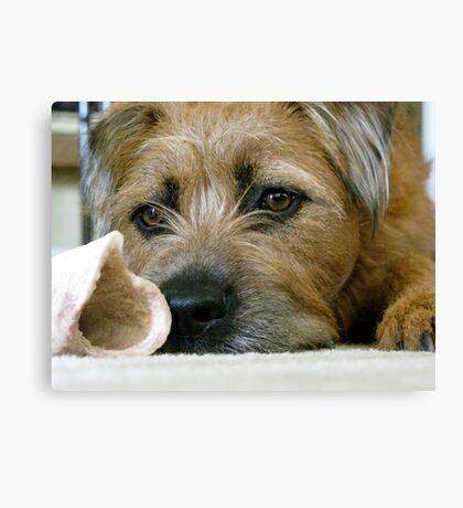 Dog with Bone Canvas Print