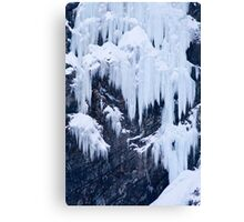 Ice Climber Canvas Print