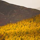 Autumn in the Lakes by mattcattell