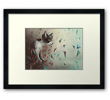 Kitten on the hunt. Framed Print
