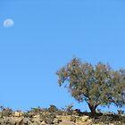 Early Moon by SlenkDee