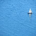 The Lone Sailboat On Titicaca by SlenkDee