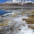 Ice-Dusted Bolivian Lake by SlenkDee