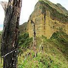 Vilcabamba´s Ridge-Top Trail by SlenkDee