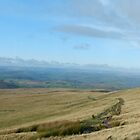 The Road to Pen Y Fan by NuttyRachy