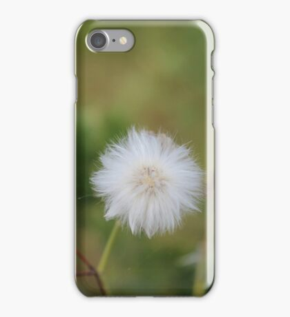 Beauty of the Dandelion iPhone Case/Skin