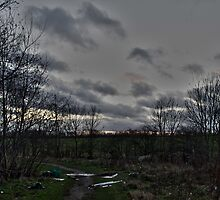 Litter on Country Path at Sunset by SDSBerry