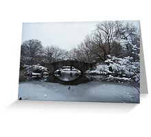 Bridge Over Lake, Snow-Covered Central Park  Greeting Card