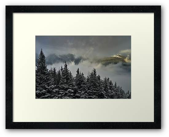 View from summit of Bretton woods ski area 2 by Anton Oparin