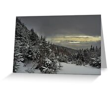 View from summit of Bretton woods ski area 4 Greeting Card