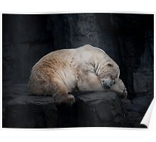 Dreaming Polar Bear Poster