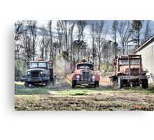 Three Old Trucks (HDR) Canvas Print