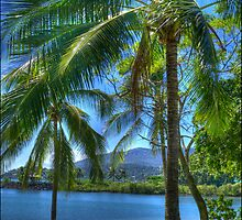 Paradise by TLCPhotography