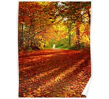 a beautiful autumn day Poster