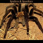 Spiders & Spookies by Kimberly Chadwick